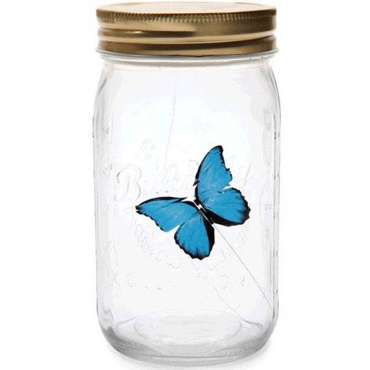 Бабочка в банке Голубая Морфо