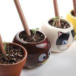 Растущие карандаши Весенний сад (8 шт)