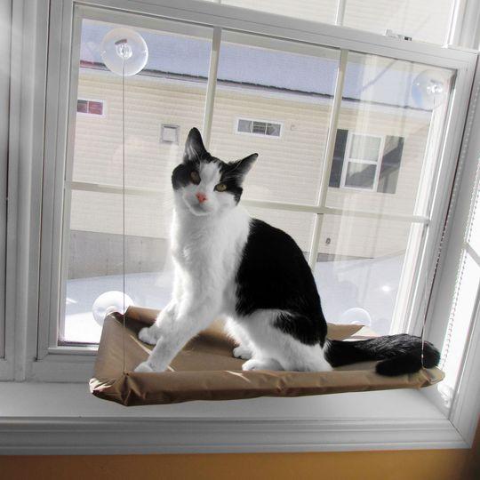 Подвесная лежанка для кошек Sunny Seat Использование