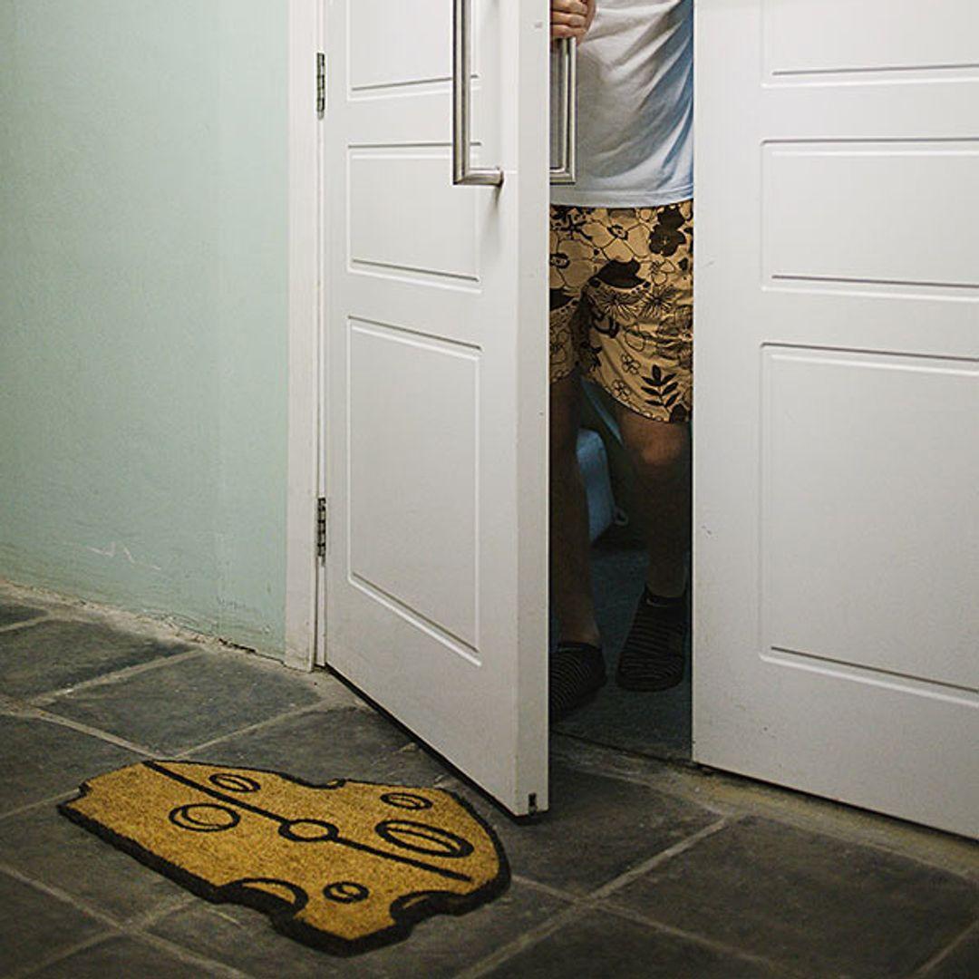 Коврик для входной двери Коврикус Сырус