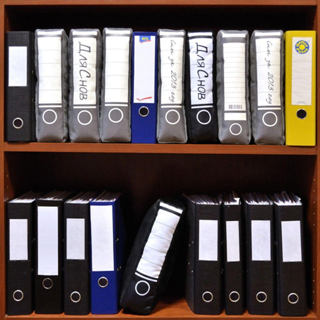 Подушка Папка ПАПодушКа В шкафу с папками