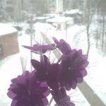USB Букет цветов Отзыв