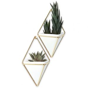 Декоративное настенное украшение Trigg mini
