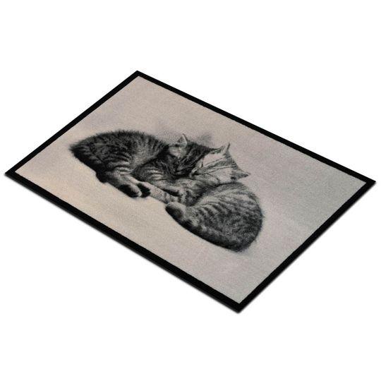 Коврик для входной двери Спящие котята
