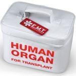Сумка Холодильник Человеческий орган Human organ
