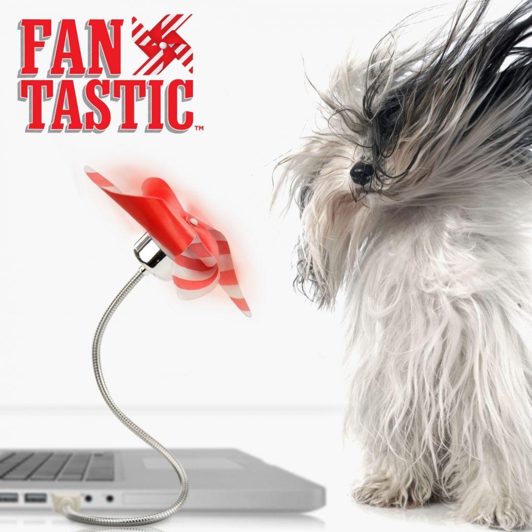 USB Вентилятор Вертушка FanTastic