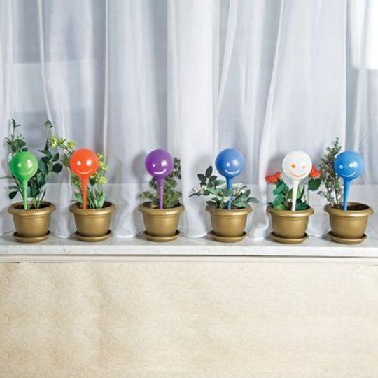 Колбы для автоматического полива цветов Plant Genie