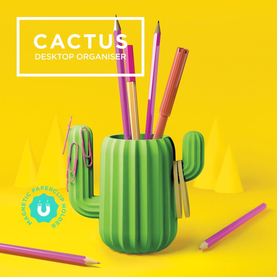 Органайзер магнитный Кактус Cactus