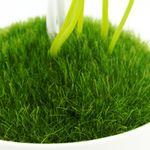 Ночник Волшебные грибы Искусственная трава