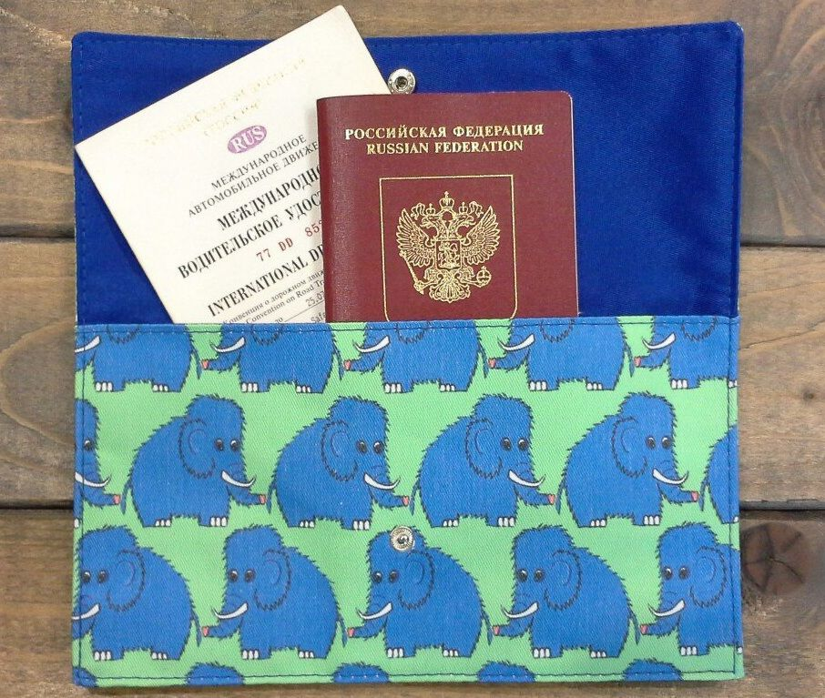 Документы в конверте для путешествий
