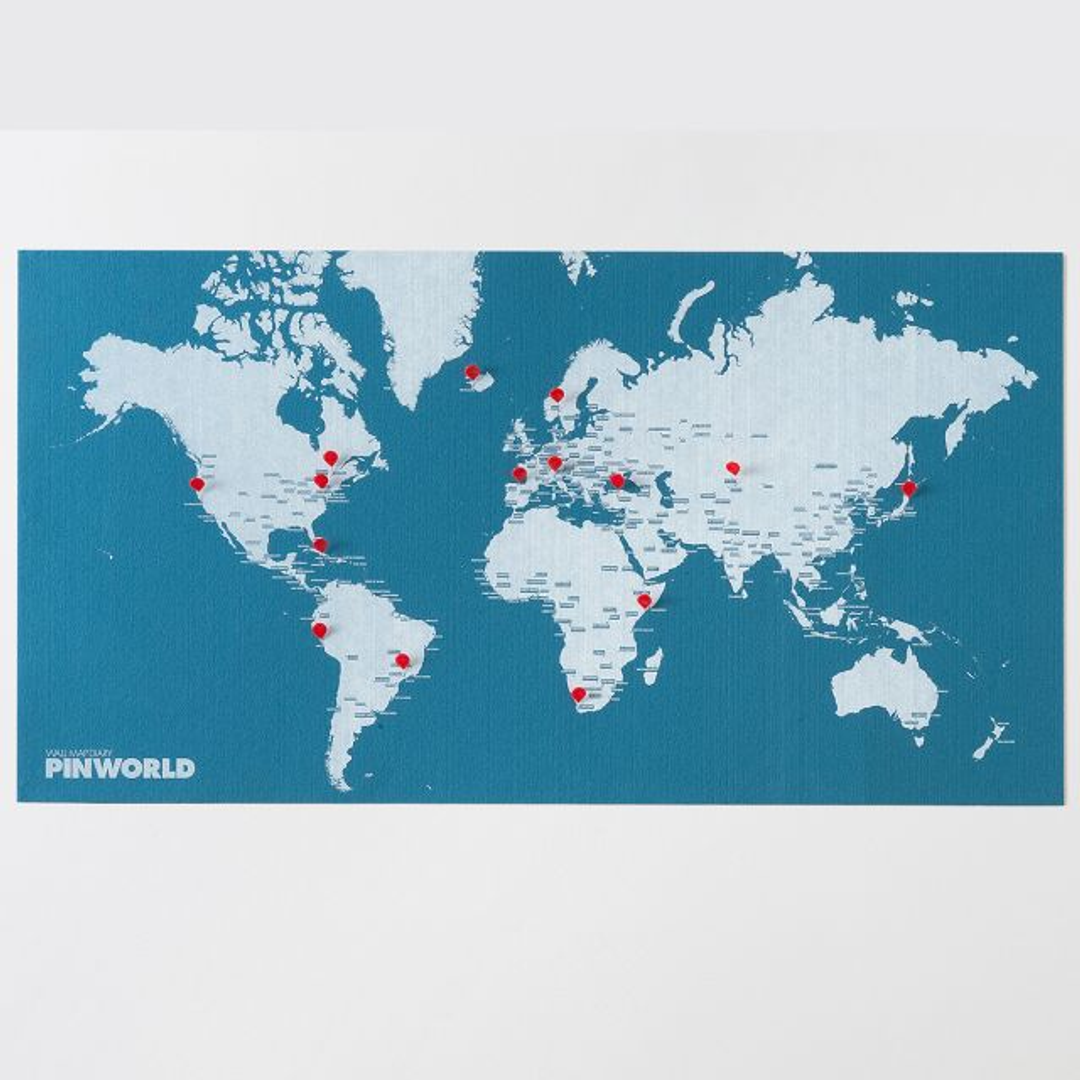 Карта мира Palomar Pin World
