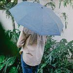 Зонт Fish