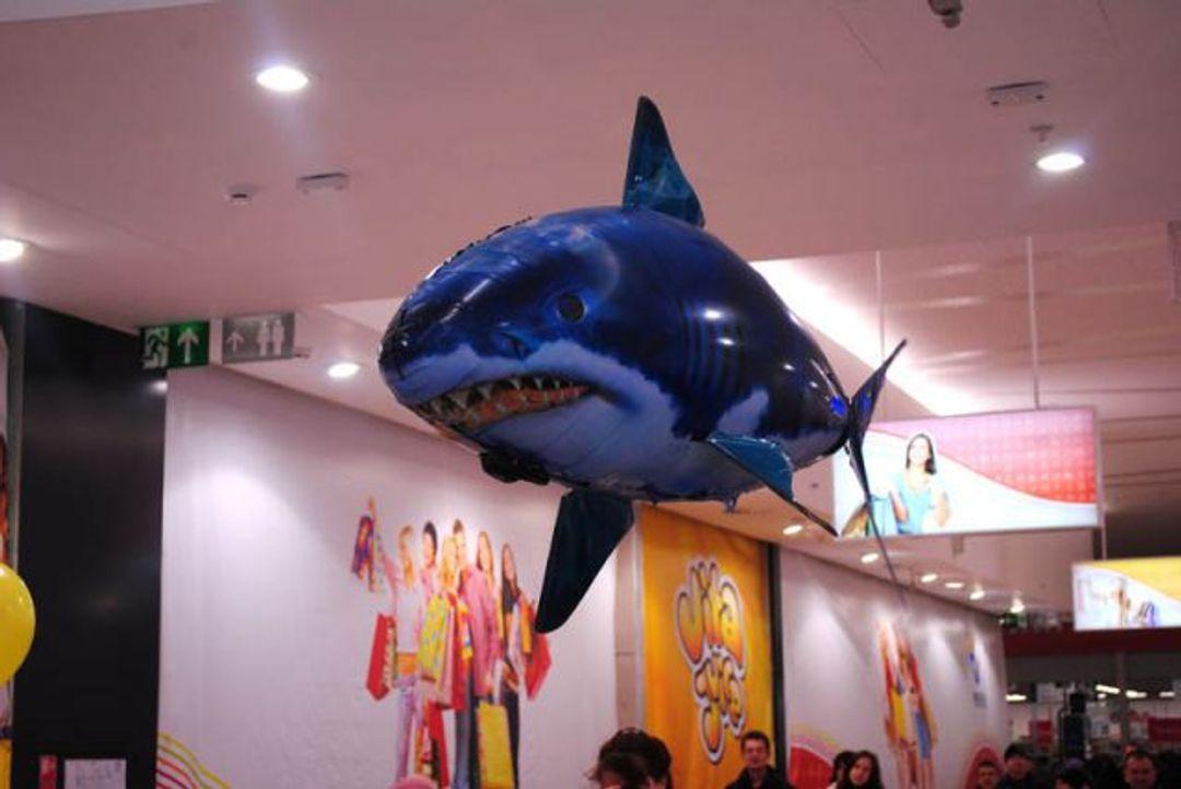 Летающая Рыба Акула