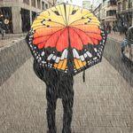 Под дождем особенно красив