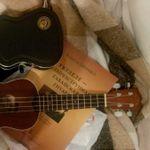Ланч-бокс Гитарный кейс Guitar Case Отзыв