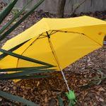 Зонт Кукуруза Corn Umbrella Открытый