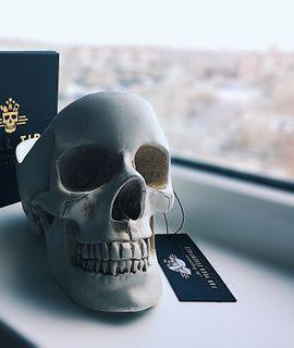 Настольный органайзер Череп Skull Отзыв