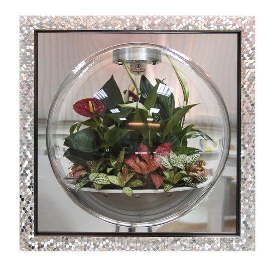 Настенный флорариум Flandriss Серебряная рама 3D (С зеркалом)