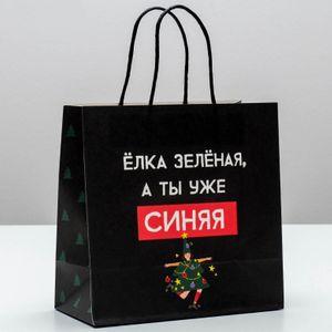 Подарочный пакет А ты уже синяя (22*22*11 см)