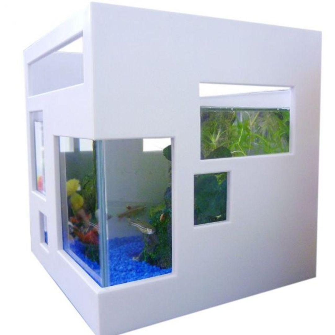 Fish hotel umbra 2 for Umbra fish hotel