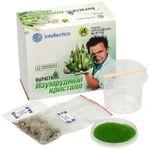 Набор для выращивания кристаллов Intellectico (Зеленый)