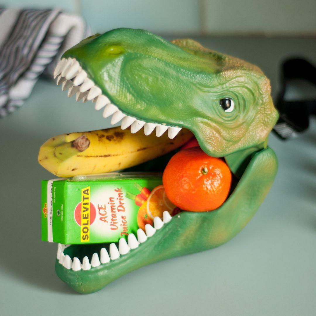 Бокс для хранения Динозавр Dinosaur