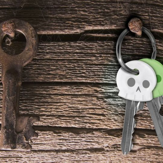 Чехлы для ключей Череп Skeleton Keys