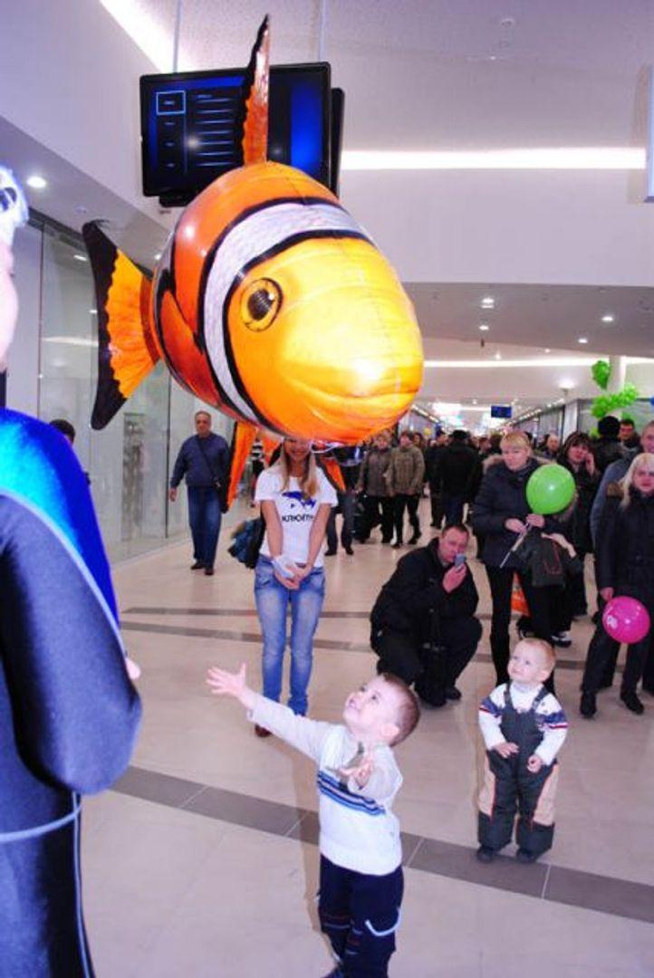 Летающая Рыба Клоун