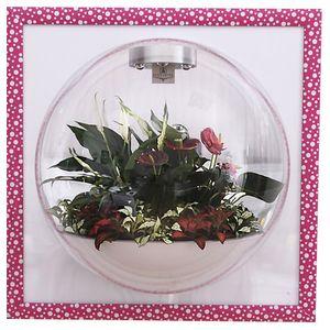 Настенный флорариум Flandriss Candy