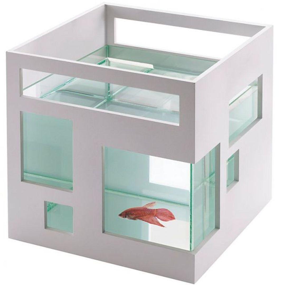 Аквариум Рыбий отель Fish Hotel