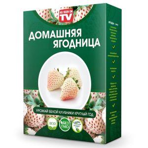 Набор для выращивания Белой клубники со вкусом ананаса