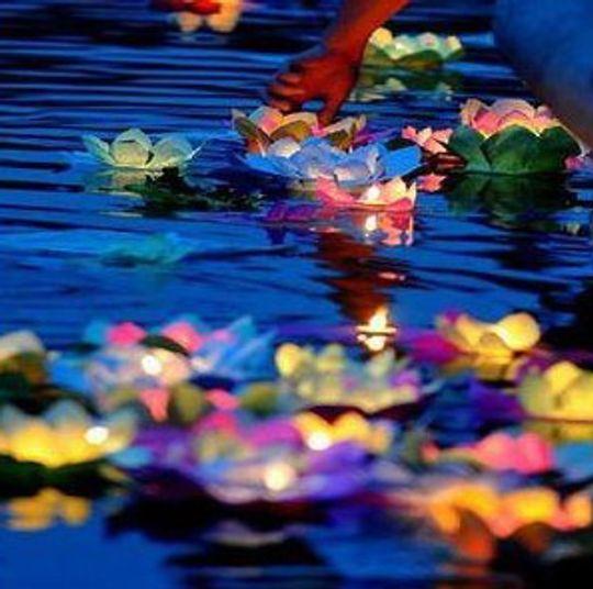 Кувшинка на воду Светящаяся