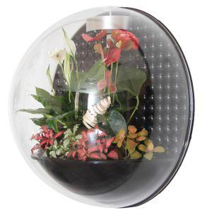 Настенный флорариум Flandriss Miniball Black 3D