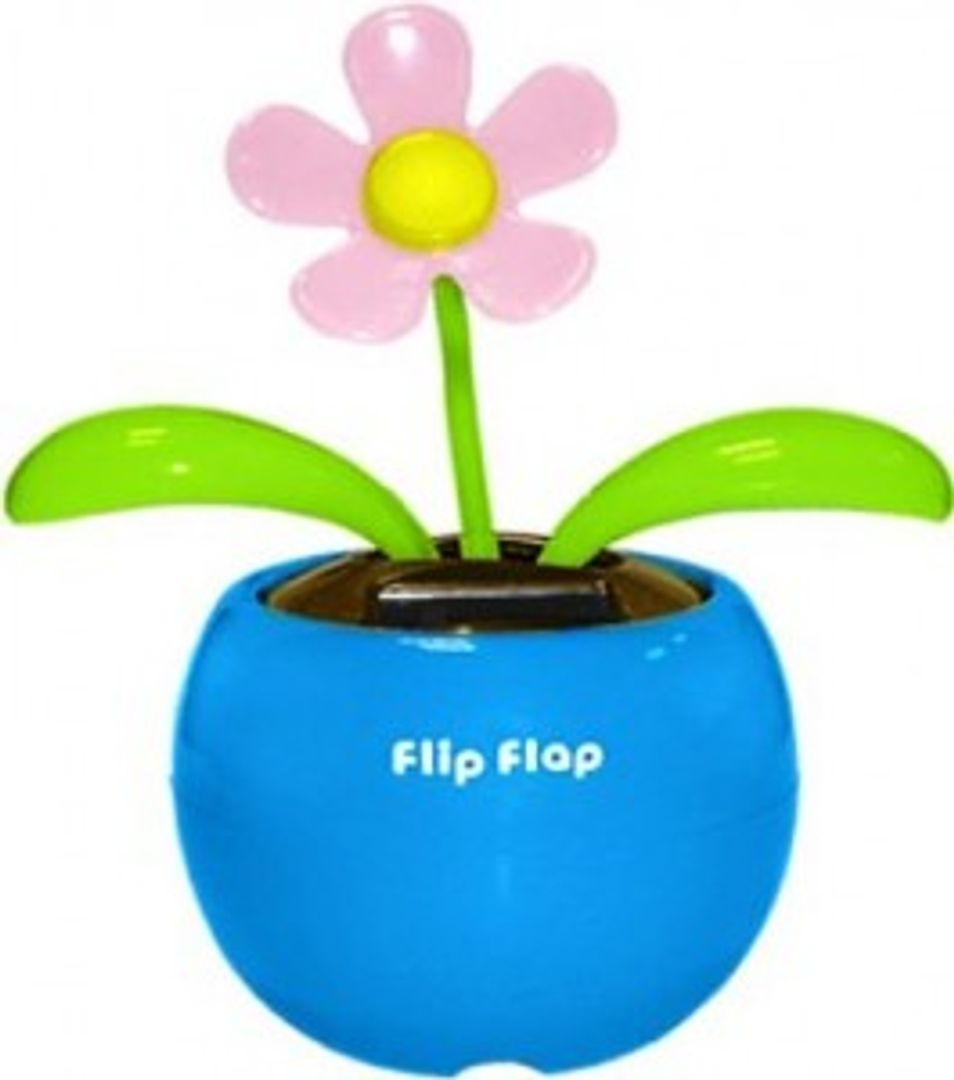 Цветок Flip Flap В Голубом горшочке