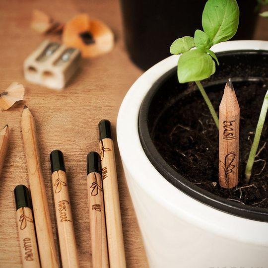 Растущие карандаши (8 шт.)
