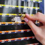 Скретч-календарь Artifact