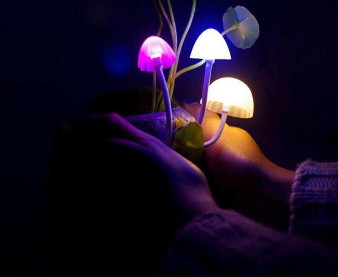 Ночник Волшебные грибы Использование