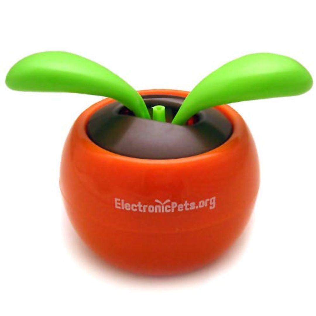 Цветок Flip Flap В Оранжевом горшочке